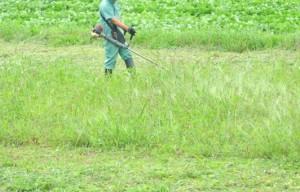 草刈り素材